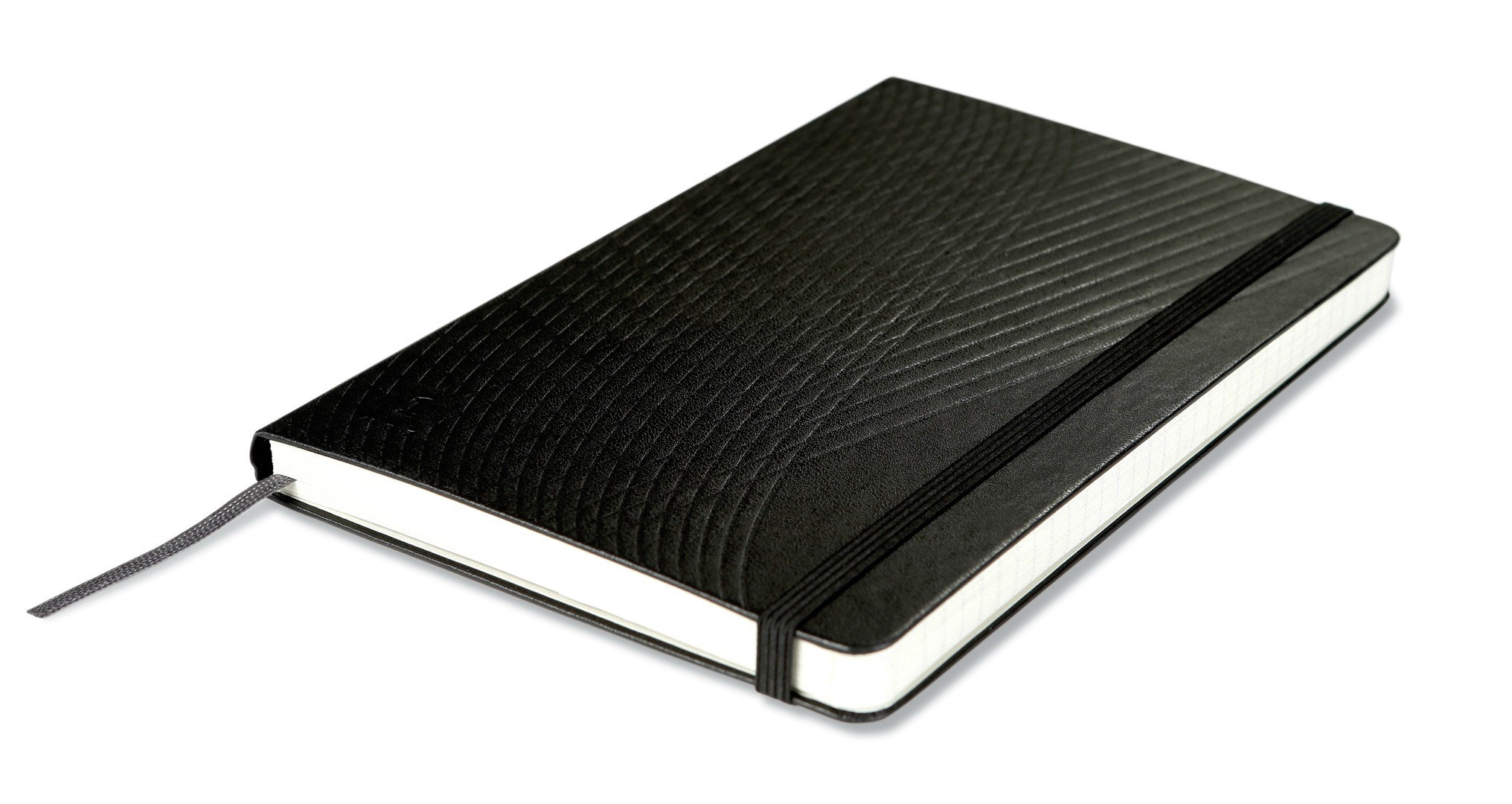 Livescribe Notebooks by Moleskine
