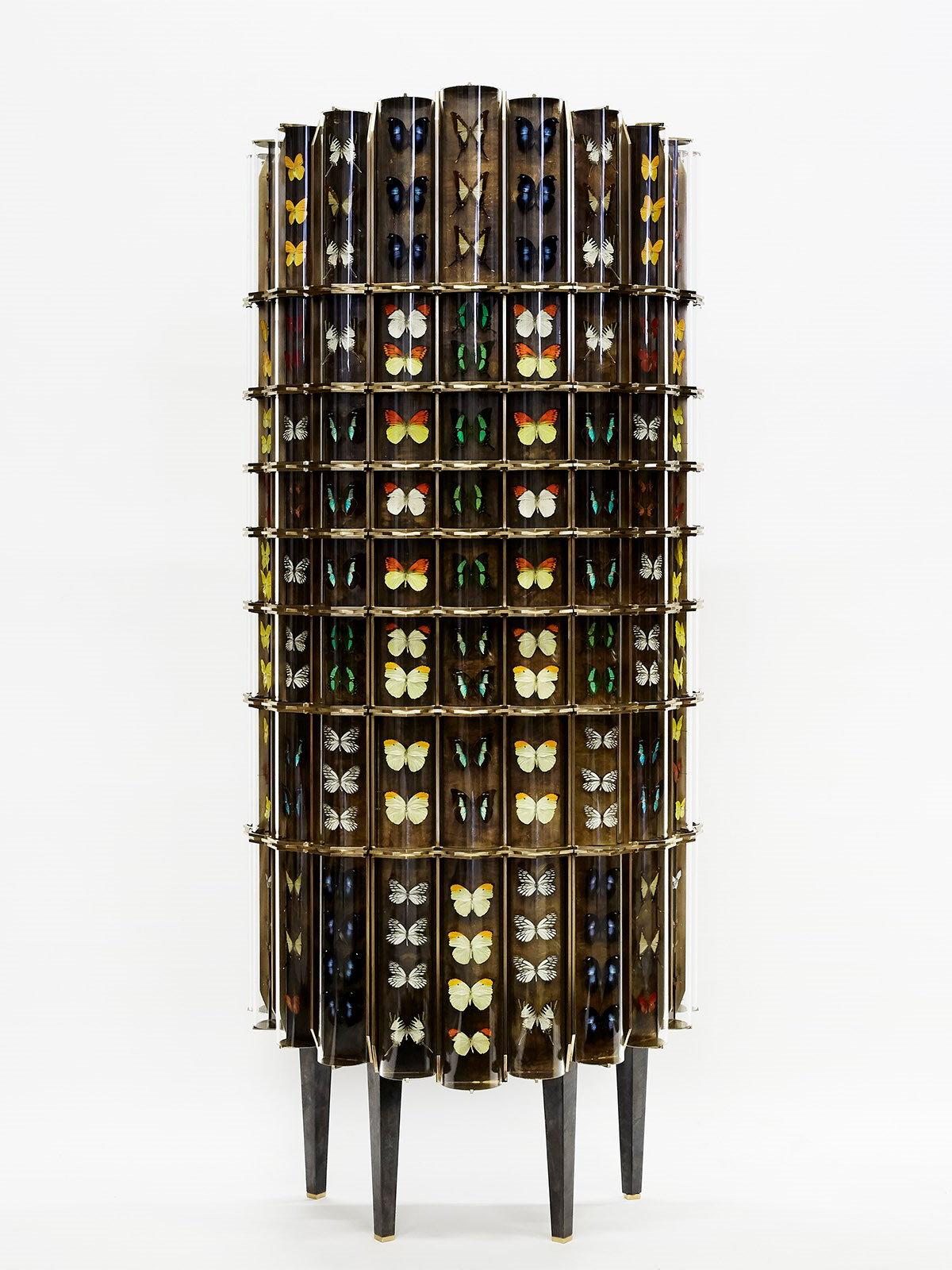 Cabinet de Curiosite by Erwan Boulloud