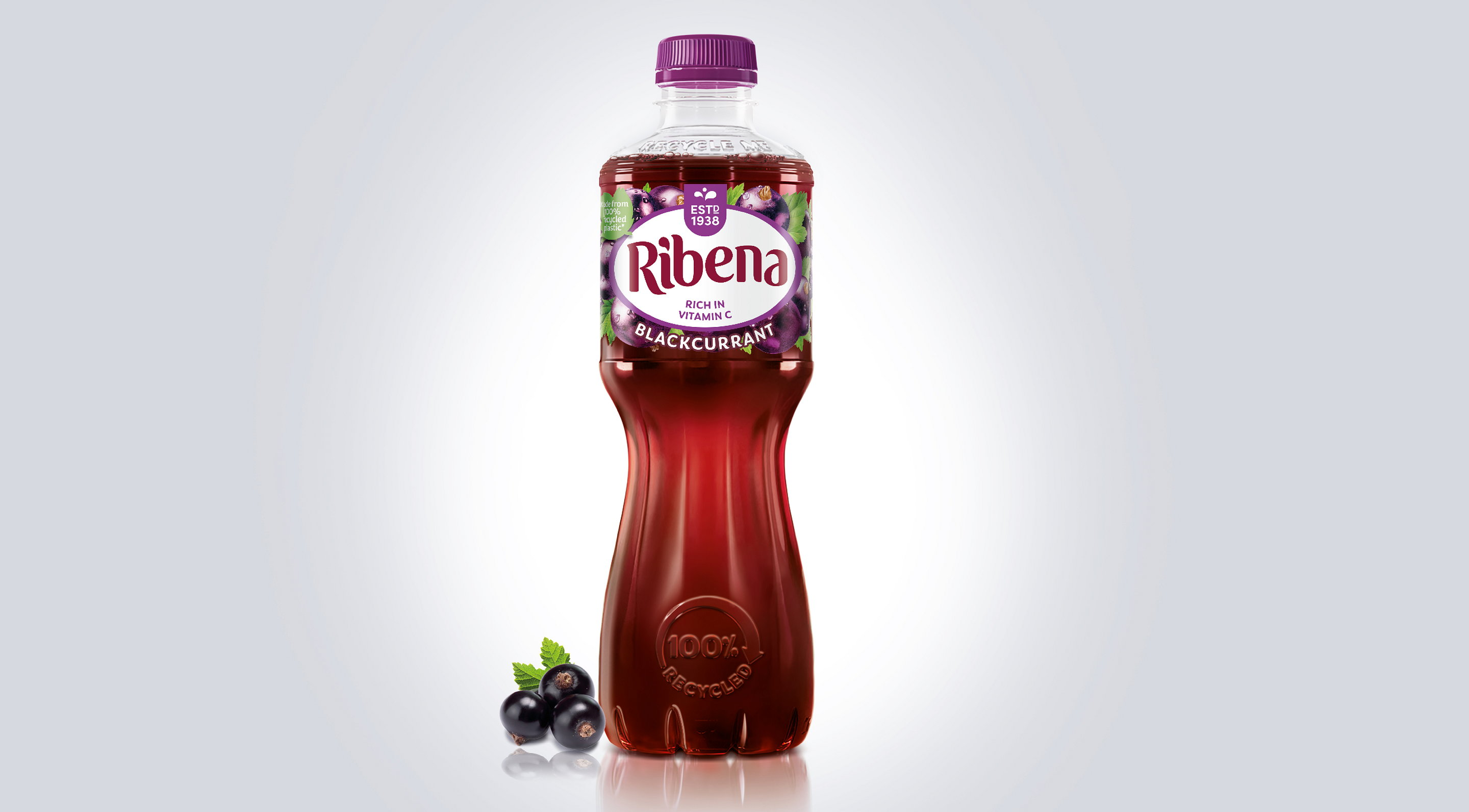 Ribena Ready To Drink