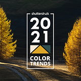 Shutterstock 2021 Color Trends Report