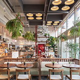 hcreates Designs French Market Eatery for Luneurs in Shanghai