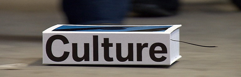 CULTURE by Stefan Sagmeister