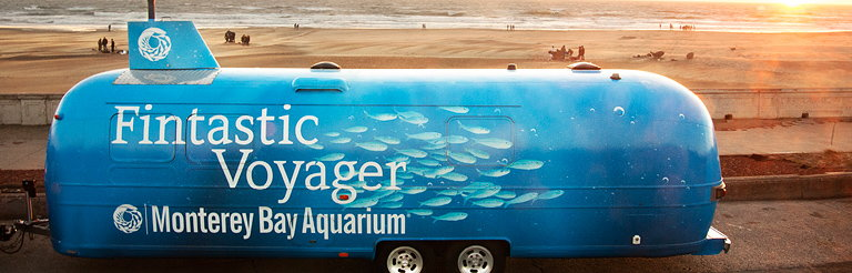 Engine Company 1 and the Monterey Bay Aquarium Invite People to Take a Fintastic Voyage Under the Sea