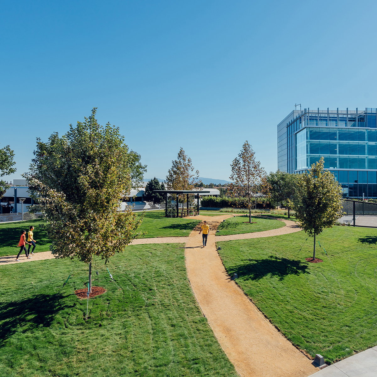 DES A+E Completes One of Silicon Valley's Largest Rooftop Parks