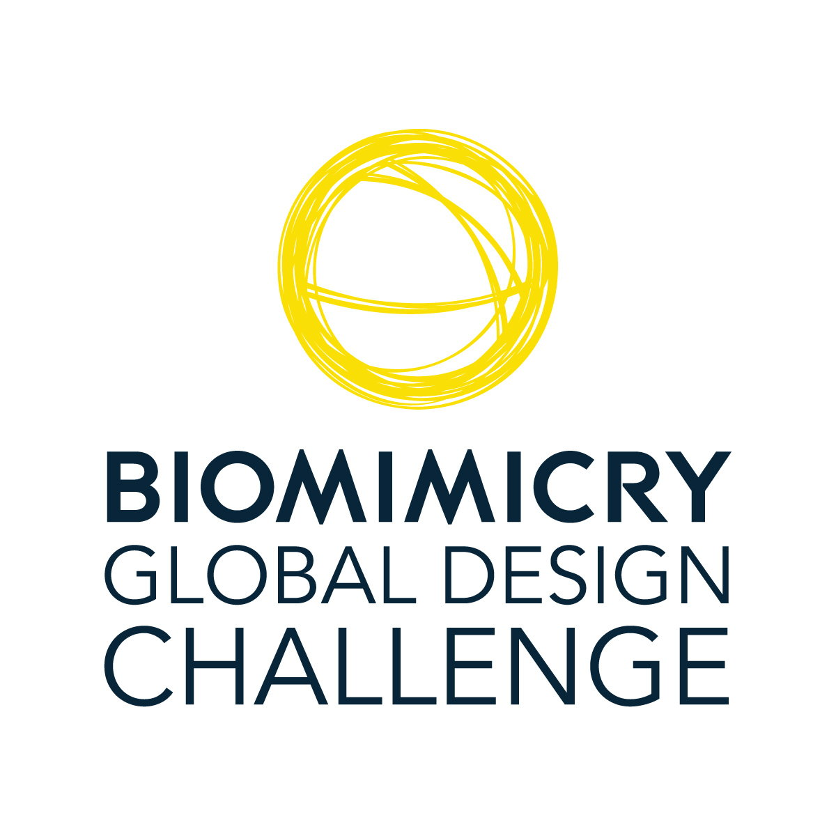 Biomimicry Global Design Challenge 2017