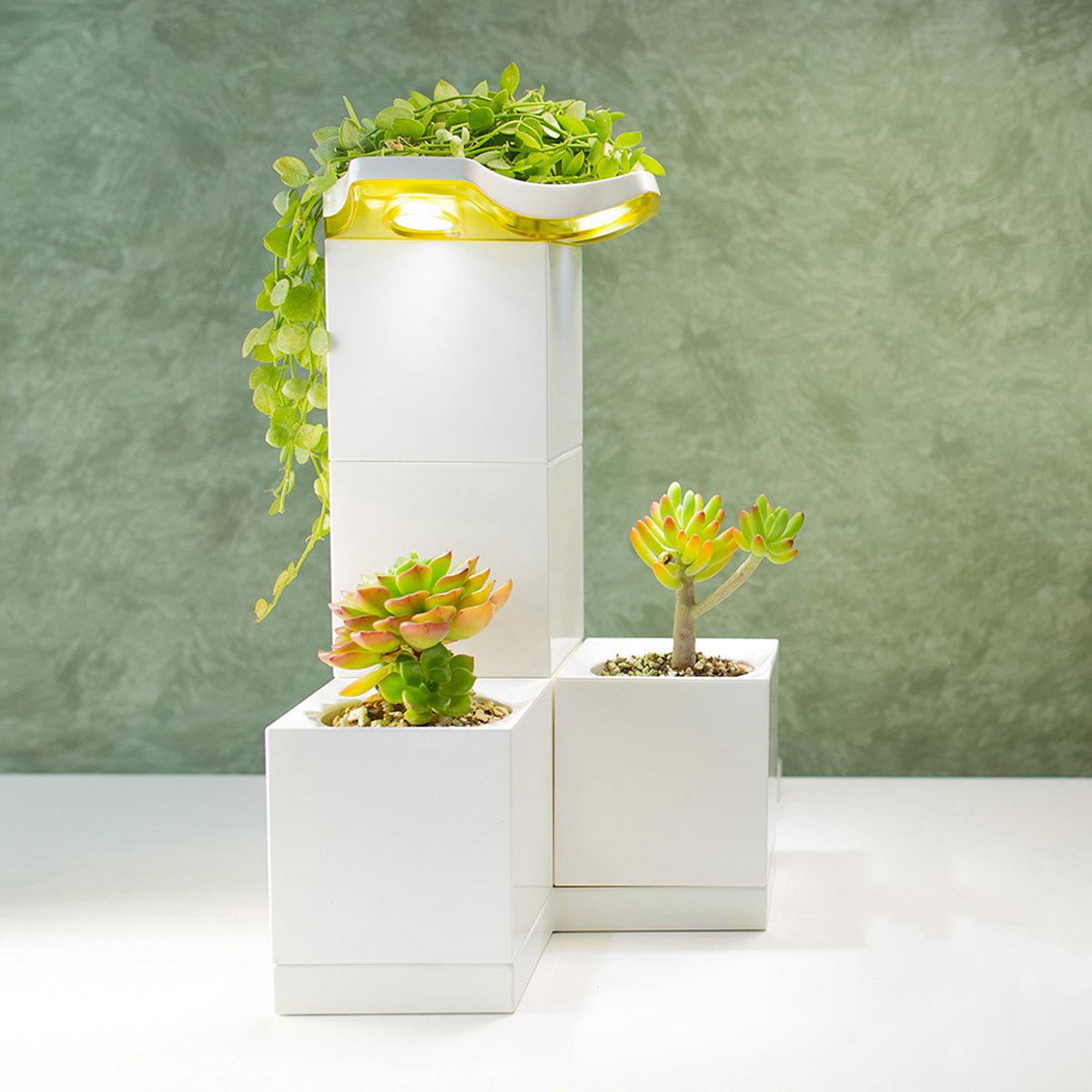LeGrow Smart Garden Kit #496A05