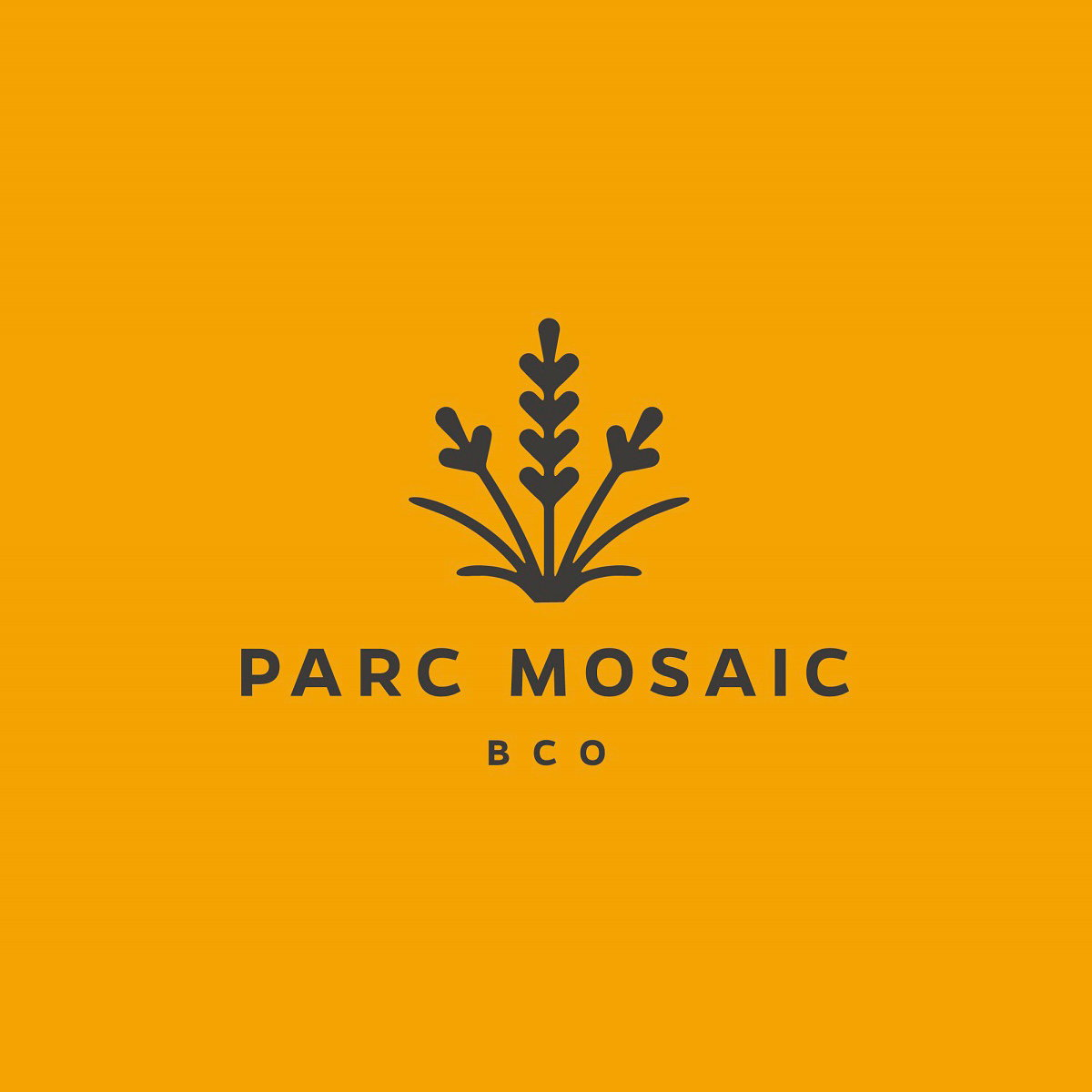 Cactus Designs Branding for Parc Mosaic