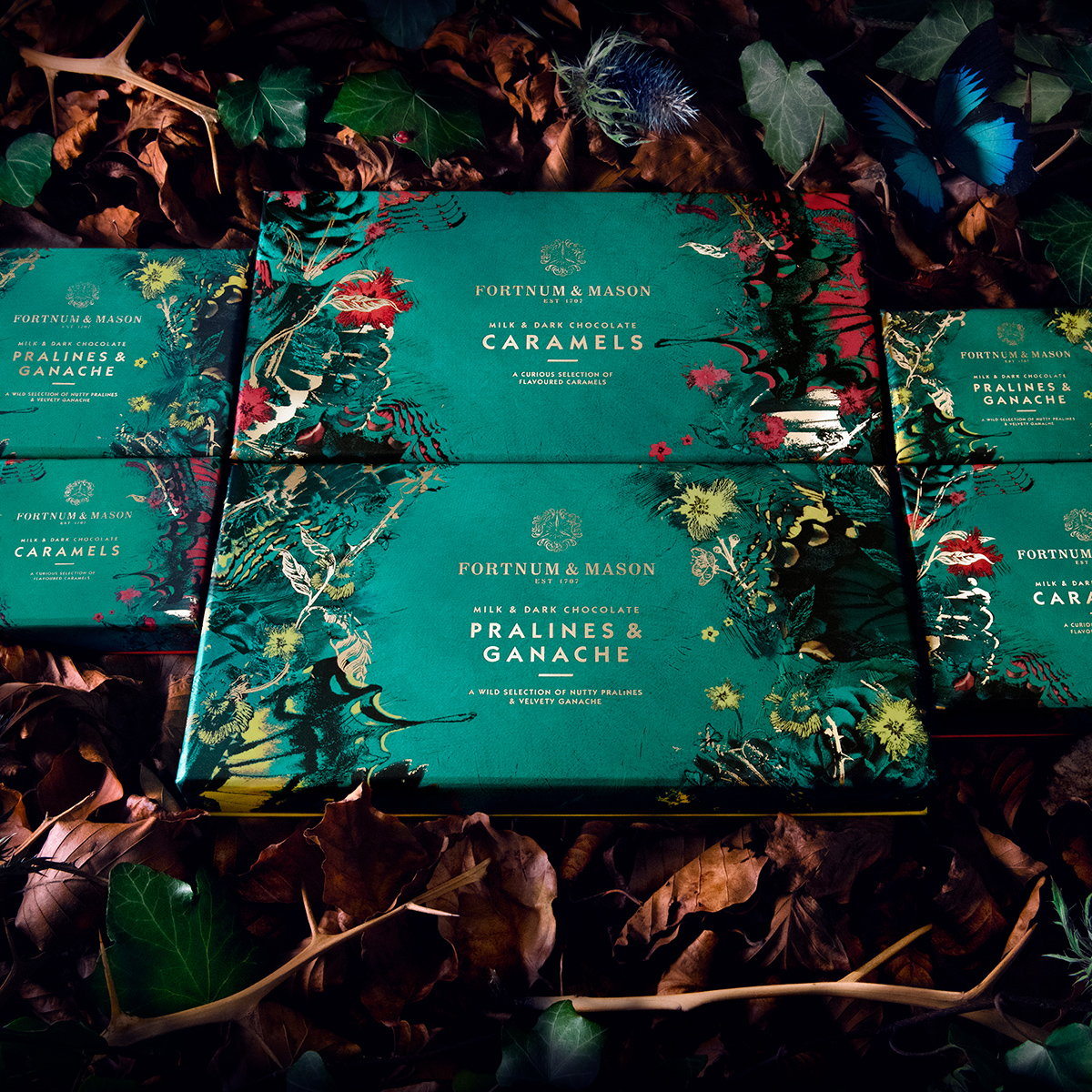 Design Bridge Creates Packaging Design for Fortnum and Mason's New Chocolate Range