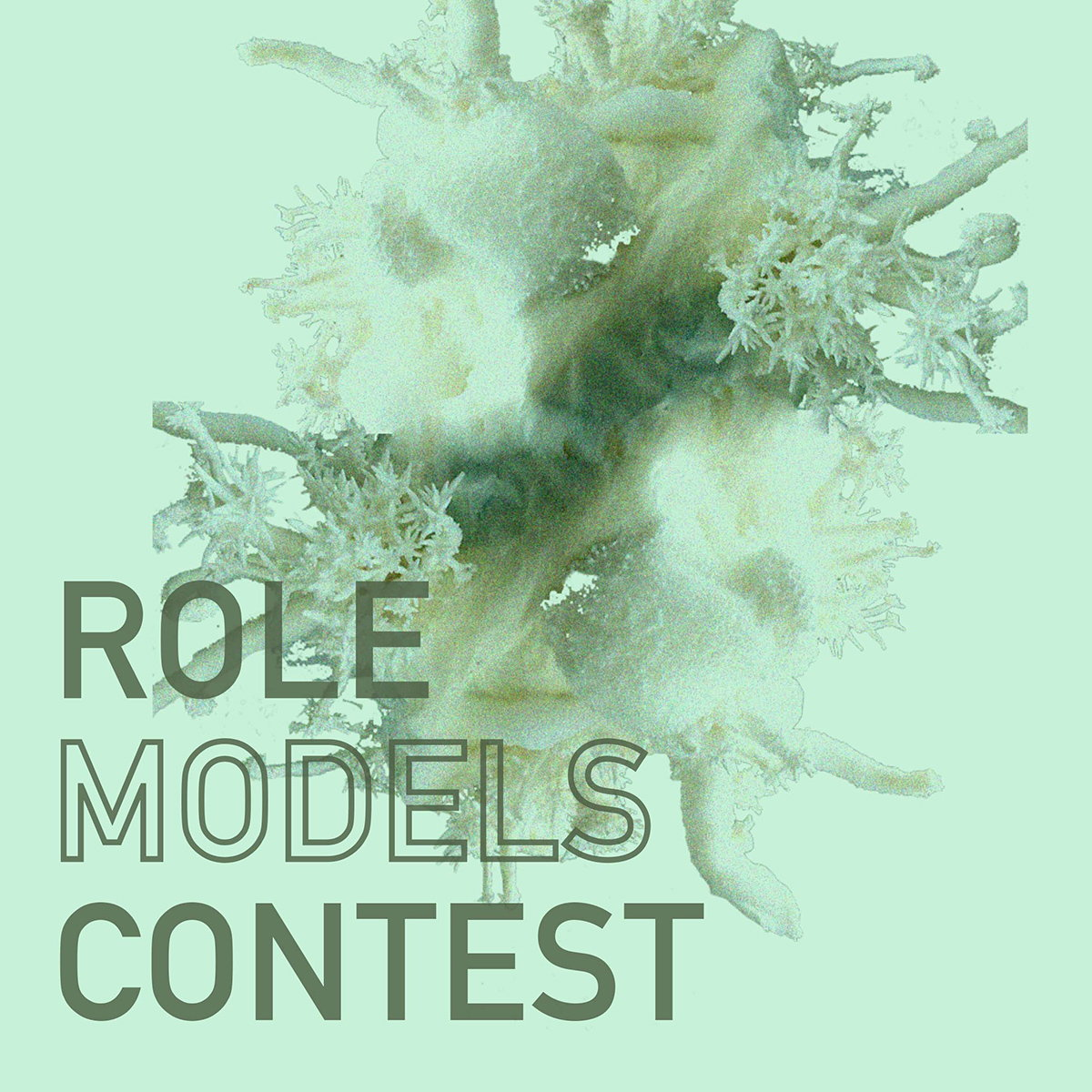 Role Models Student Design Competition